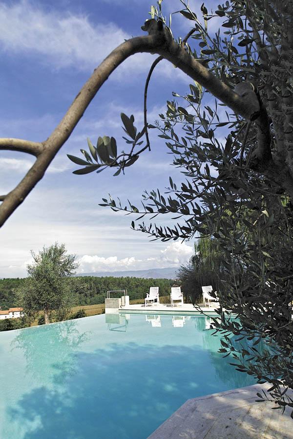 piscina_olivo